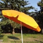 parasol-iris