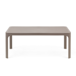 net table tortora